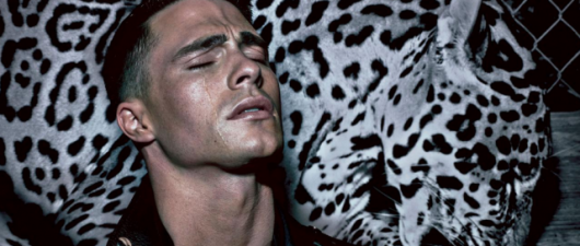 Coltan Haynes: New Photo Shoot With Steven Klein (PICS)