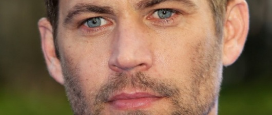 Paul Walker Dead: Star of 'Fast And The Furious' Movies